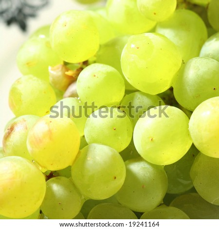 green grape #19241164