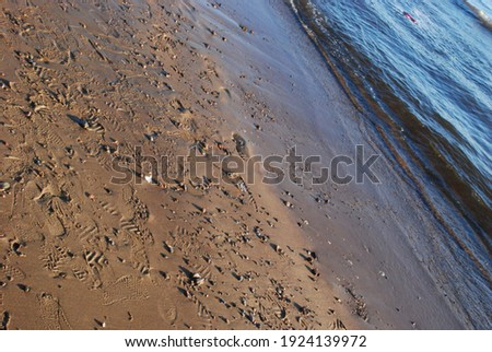 Light surf on the Gulf of Finland. A sidelong glance at water and sand. the water runs in a wave onto the sandy shore. Wet sand, waves of water, footprints in the sand, wet small stones. Royalty-Free Stock Photo #1924139972