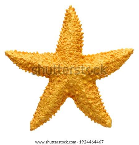Yellow starfish souvenir, handmade decoration, isolated on white background Royalty-Free Stock Photo #1924464467