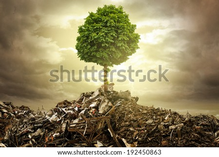 Survive Royalty-Free Stock Photo #192450863