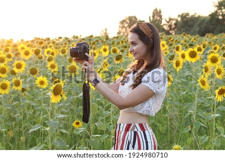 Woman photographer takes pictures in nature, photographer takes pictures of a beautiful field of sunflowers at sunset. High quality photo