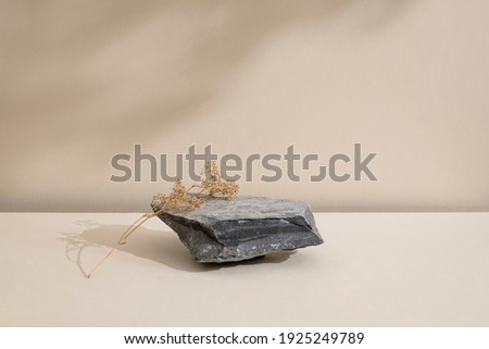 Minimal modern natural beauty. Background for branding and product presentation. Still life mock up photo of a gray stone and a dry flower with long shadow on beige table. Royalty-Free Stock Photo #1925249789