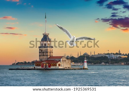 Seagull near Maiden Tower (kız kulesi) in Istanbul in the evening with cloudy sky Royalty-Free Stock Photo #1925369531