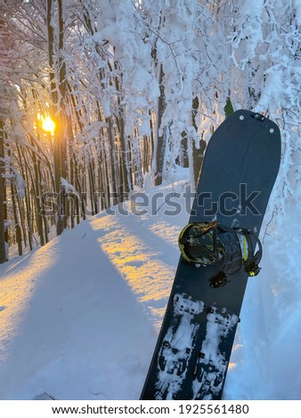 VERTICAL, CLOSE UP: Picturesque sunset illuminates the forest and a snowboard stuck in fresh snow. Idyllic shot of a bare deciduous forest in the idyllic Slovenian backcountry covered in powder snow. Royalty-Free Stock Photo #1925561480