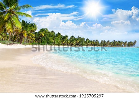 Tropical beach, turquoise sea water, ocean wave, yellow sand, green palms, sun blue sky, white clouds, beautiful seascape, summer holidays, exotic island vacation, caribbean travel, maldives landscape Royalty-Free Stock Photo #1925705297