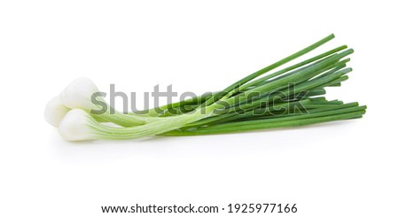 Green onion isolated on the white background Royalty-Free Stock Photo #1925977166
