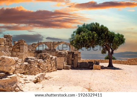 Cyprus. Limassol. Curion. Arches of the early Christian Basilica. Ruins of an ancient city in Cyprus. Archaeological Park on the Mediterranean coast. The remains of an ancient city and a green tree. Royalty-Free Stock Photo #1926329411