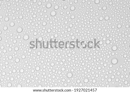 Water drops on white background texture. backdrop glass covered with drops of water.  bubbles in water Royalty-Free Stock Photo #1927021457