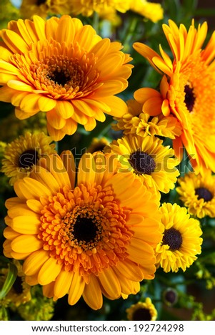 bouquet of yellow and orange flowers #192724298