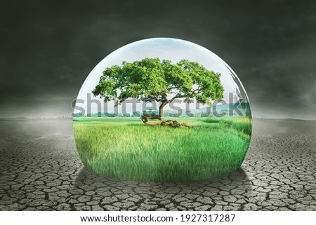 Close up of a drop water with green trees and farmland on dried soil. Global warming concept Royalty-Free Stock Photo #1927317287