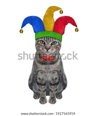 A gray cat clown in a jester hat is sitting. April fool's day. White background. Isolated. Royalty-Free Stock Photo #1927565954