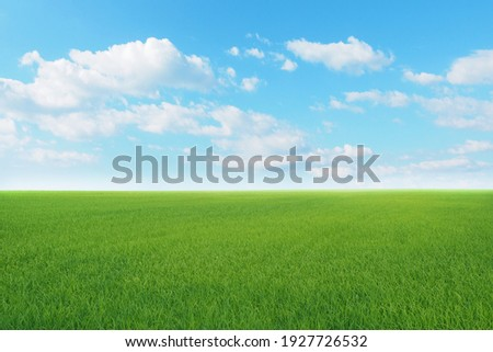 Green meadows with blue sky and clouds background. Royalty-Free Stock Photo #1927726532