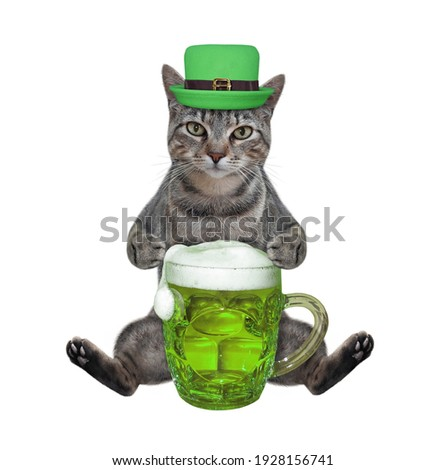 A gray cat in a hat sits and drinks green beer. St. Patrick's Day. White background. Isolated.