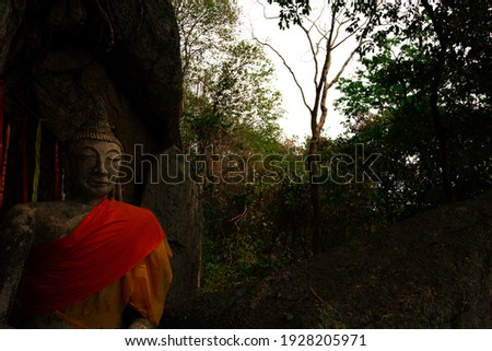 The buddha under the shade of a tree