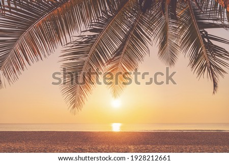 Palm tree at tropical beach on sunset sky abstract background. Summer vacation and nature travel adventure concept. Vintage tone filter effect color style. Royalty-Free Stock Photo #1928212661