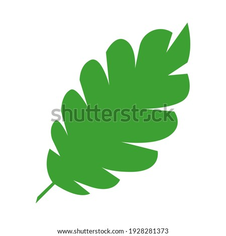 Jungle tropical green leaf, rainforest herbal element. Stock vector illustration isolated on white background. Can be used as an isolated sign, symbol or icon. Botanical plant flat vector illustration Royalty-Free Stock Photo #1928281373