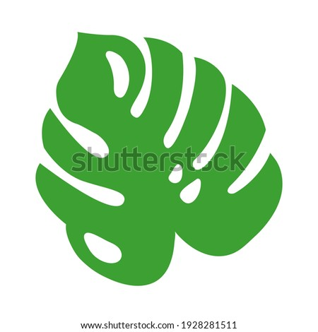 Jungle or rainforest tropical green leaf, herbal element. Stock vector illustration isolated on white background. Can be used as an isolated sign, symbol or icon. Botanical plant flat vector monstera. Royalty-Free Stock Photo #1928281511