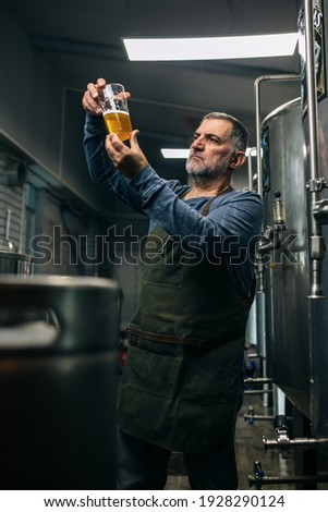 brewer working in his mini craft brewery. He is examining the beer Royalty-Free Stock Photo #1928290124