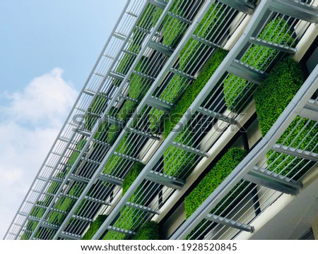 green wall, vertical facade garden with passive cooling and eco friendly strategies Royalty-Free Stock Photo #1928520845