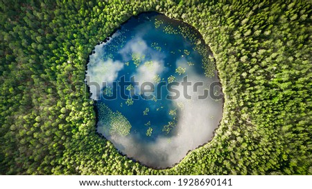 An almost perfect circular lake shot straight down from the air resembles the earth surrounded by a pine forest Royalty-Free Stock Photo #1928690141