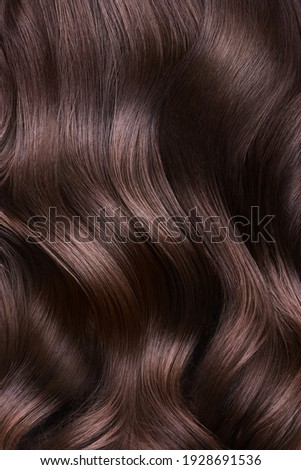 A closeup view of a bunch of shiny curls brown hair. Royalty-Free Stock Photo #1928691536