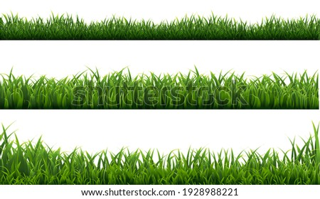 Green Grass Frame With White Background, Vector Illustration