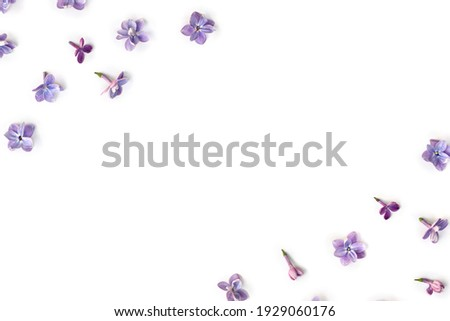 Frame of violet blue flowers lilac ( Syringa vulgaris ) on a white background with space for text. Spring flowers. Top view, flat lay Royalty-Free Stock Photo #1929060176