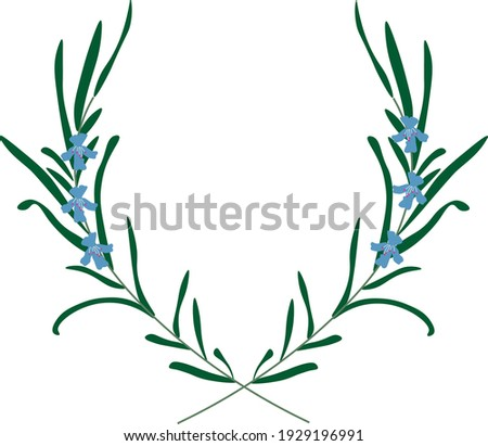 two rosemary flowers frame vector illustration Royalty-Free Stock Photo #1929196991