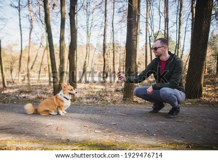a young handsome caucasian male doing a photo of a welsh corgi pembroke dog doing a trick