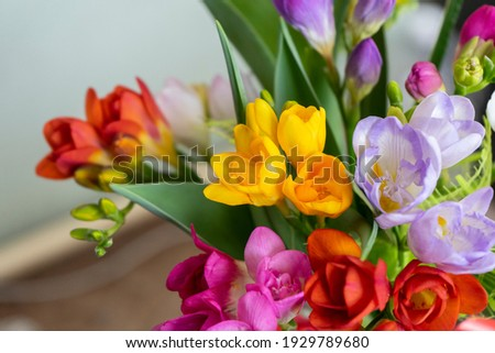 spring flowers in a vase Royalty-Free Stock Photo #1929789680