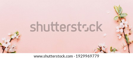 Cherry tree blossom. April floral nature and spring sakura blossom on soft pink background. Banner for 8 march, Happy Easter with place for text. Springtime concept. Top view. Flat lay Royalty-Free Stock Photo #1929969779
