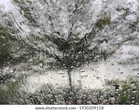 a picture of rainwater on the car windscreen with backdrop of a blurred view of the tree. Photoshoot from inside the car.