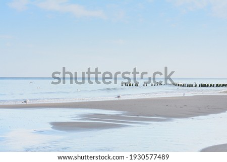Sunset over sea. Deserted beach with white birds and soft surf in evening. Relaxation and tranquility. Beautiful seascape, selective focus. Royalty-Free Stock Photo #1930577489