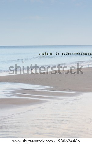 Seashore at sunset in evening. Seagulls and soft waves on deserted beach. Relaxation and tranquility. Beautiful seascape, selective focus. Royalty-Free Stock Photo #1930624466
