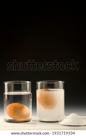 Physics. Water density science experiment. Egg floating in salt water. Black background. Royalty-Free Stock Photo #1931719334