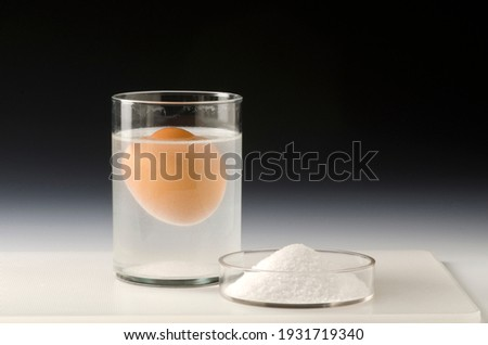 Physics. Water density science experiment. Egg floating in salt water.Black background. Royalty-Free Stock Photo #1931719340