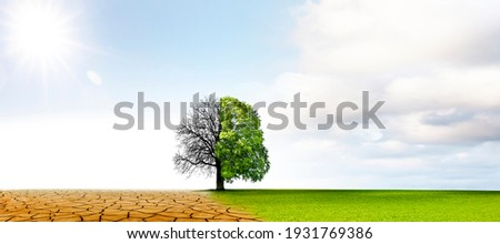 Climate change from drought to green growth Royalty-Free Stock Photo #1931769386