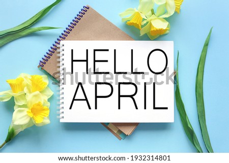Hello April . text on white notepad paper on blue background. near notepad with yellow flowers and green leaves Royalty-Free Stock Photo #1932314801