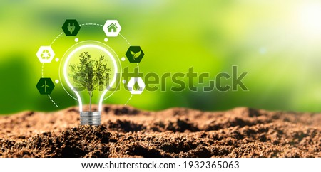 Environmental protection, renewable, sustainable energy sources. Plant growing in the bulb concept Royalty-Free Stock Photo #1932365063