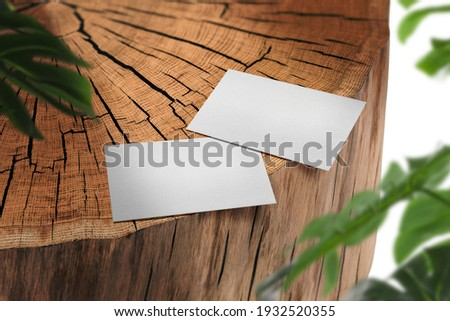 Clean minimal business card mockup on Timber background.