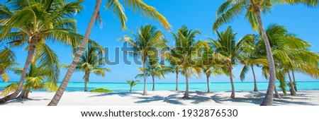 Panorama of idyllic tropical beach with palm trees, white sand and turquoise blue water Royalty-Free Stock Photo #1932876530