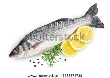 Sea bass fich isolated on white background with clipping path and full depth of field. Top view. Flat lay Royalty-Free Stock Photo #1933371788
