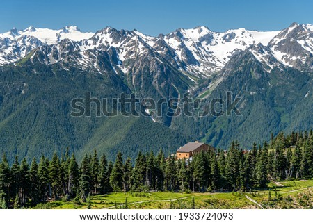 The Hurricane Ridge viewpoint of Olympic National park in Washington, USA. The background is snow mountain Royalty-Free Stock Photo #1933724093