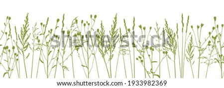 Silhouettes of natural herbs on white - seamless border with green grass - herbal design element for spring and summer Royalty-Free Stock Photo #1933982369