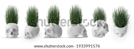 Skull head flower pot with green grass. Vase for flowers in form of skull. Isolated white background 3d illustration different angle view realistic set