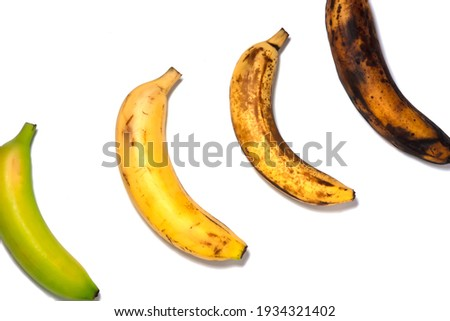 Four bananas - green underripe, ripe, very ripe and over ripe - in diagonal. Banana ripeness. Concept of life cycle, ranging from young to old. White background, isolated. Royalty-Free Stock Photo #1934321402