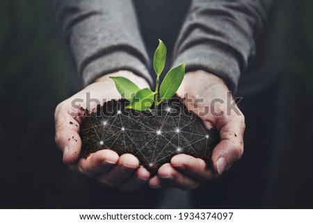 Smart agriculture 5.0 green plant product farming technology background Royalty-Free Stock Photo #1934374097