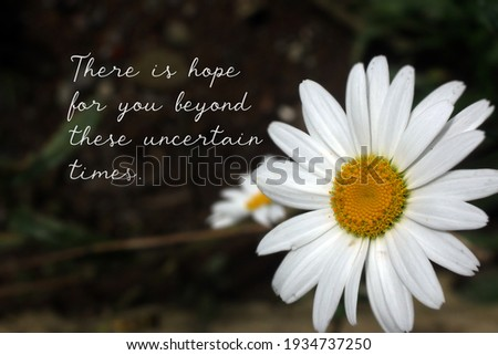 Inspirational quote - There is hope for you beyond these uncertain times. Hope and faith motivational words concept with spring white daisy flowers on dark background.