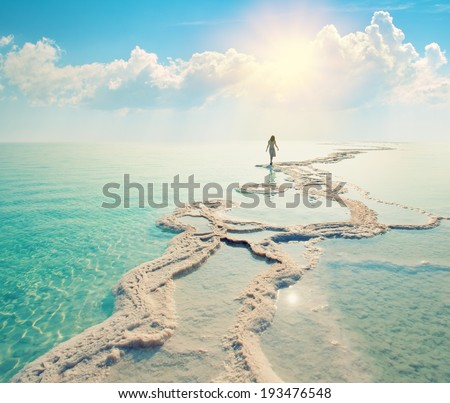 Silhouette of a young woman walking on Dead Sea salt shore at sunrise towards the sun. Solitude Royalty-Free Stock Photo #193476548