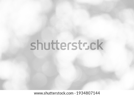 Abstract blur white and silver background with soft shimmer for display,White bokeh, abstract background